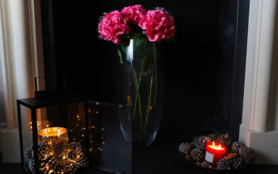 Happy Valentines / Galentines / Anti-Valentines